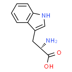 L-Tryptophan Structure